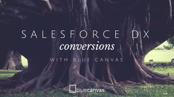 Convert to the Salesforce DX Format with Blue Canvas